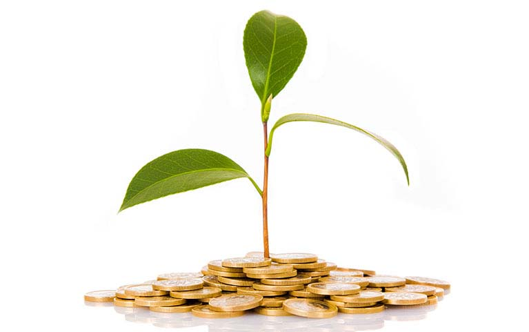 SCB DIVIDEND STOCK OPEN END FUND<br>(Individual/Group)