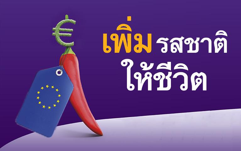 กองทุนเปิดไทยพาณิชย์<br>หุ้นยุโรปสมอลแคป (ชนิดผู้ลงทุนกลุ่ม/บุคคล)