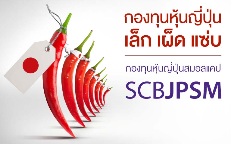 SCB Japan Small Cap Equity Fund<br>(Individual/Group)